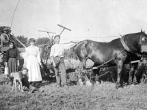 Porthleven Agriculture Book